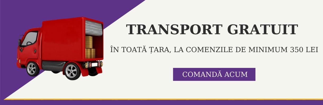 Transport 2021